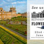 EyeEyeDesign at Blenheim Palace Flower Show